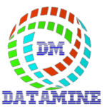 Datamine IT Services